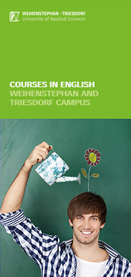 Flyer Courses in English