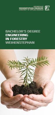 Flyer Engineering in forestry