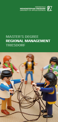 Flyer Regional Management (MBA)