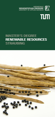 Flyer Master's degree programme in Renewable Resources