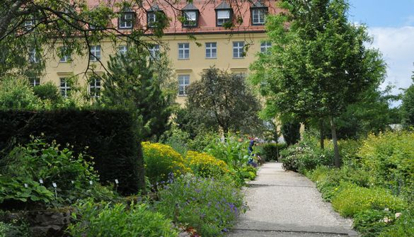 Main path in the Oberdieck Garden running in the direction of the Löwentor building